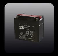 Maintenance Free AGM Battery (серия GTX)
