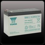 Стационарный аккумулятор YUASA REW45-12